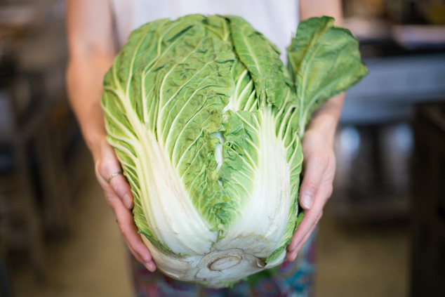 a woman holding a large chinese cabbage
